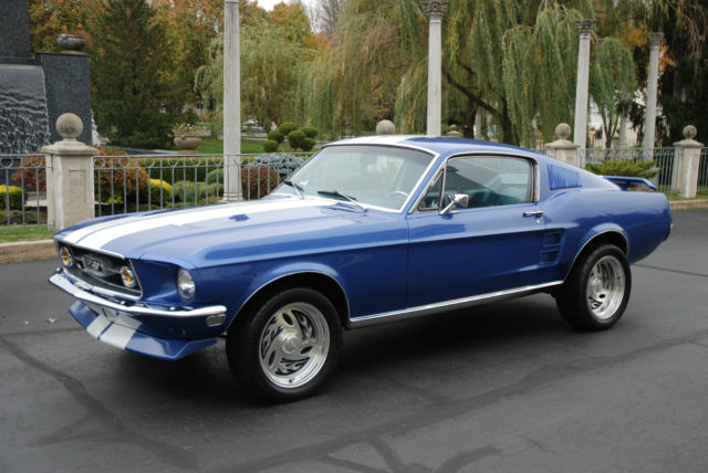 1000  images about Mustangs on Pinterest